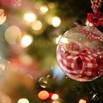 12月のひとこと(December)