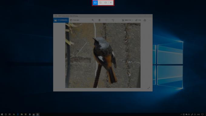 切り取り&スケッチ 画像の取り込み画面